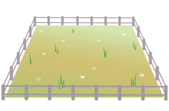 雑草や不法投棄にお困りの土地